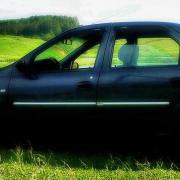 Накладки на молдинги дверей для Dacia Logan sedan (2005 - ...)