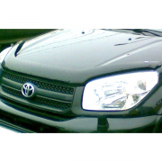 Мухобойка для Toyota RAV4 (2001 - 2005)