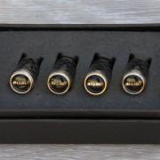 Колпачки на ниппеля для Nissan X-Trail T31 (2007 - 2014)